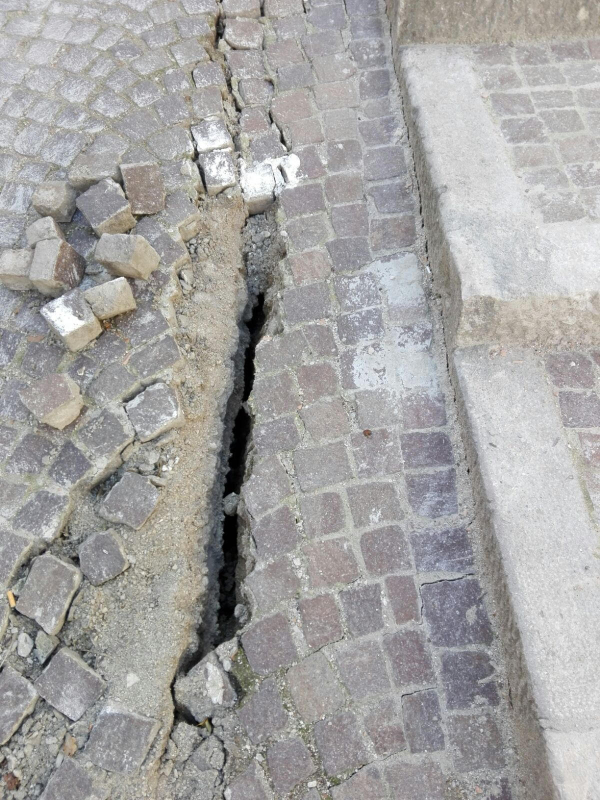 cvta Help Civita